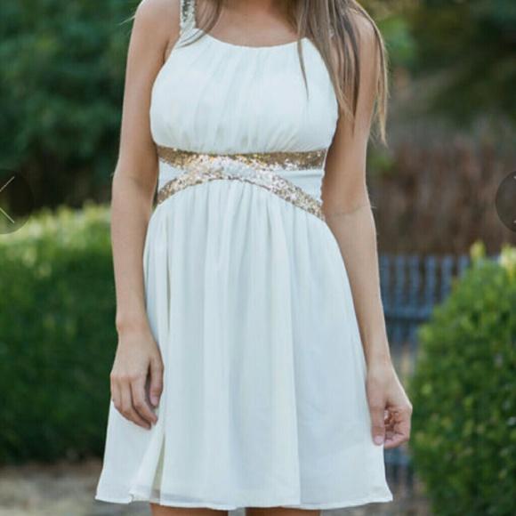 b8f6d53c61b Dresses   Skirts - Chiffon Sequin Dress from The Mint Julep Boutique